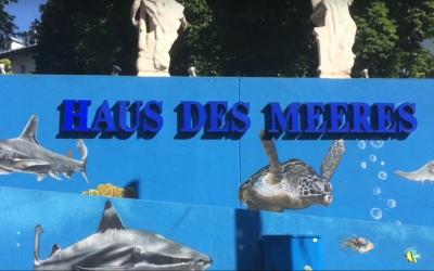 Video o ekskurziji na Dunaj